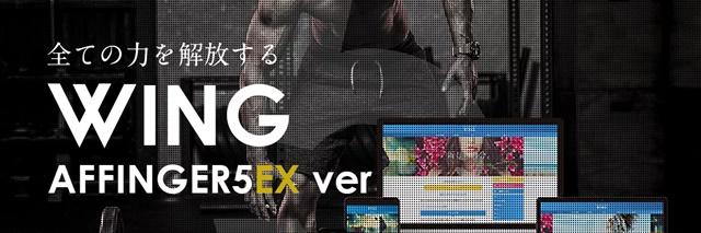 【最強セット】AFFINGER PACK3